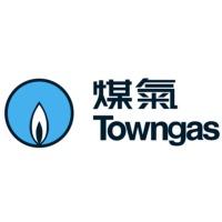 The Hong Kong and China Gas logo
