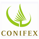 Conifex Timber logo